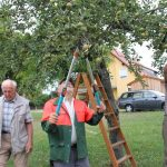 r-west-lbp-obstbaumschnitt (4)
